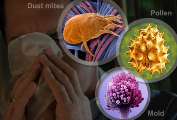 Симптомы и лечение аллергического насморка